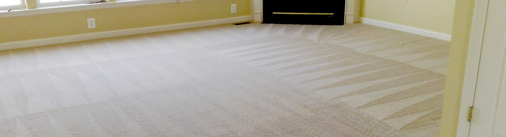 We Clean All Area and Fine Rugs